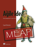 The Agile Idea