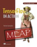 TensorFlow 2.0 in Action
