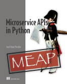 Microservice APIs in Python