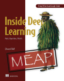 Inside Deep Learning