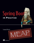 Spring Boot in Practice