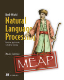 Real-World Natural Language Processing
