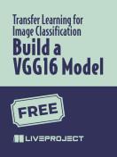 Build a VGG16 Model