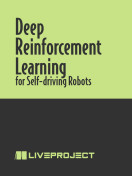 Deep Reinforcement Learning for Self-Driving Robots