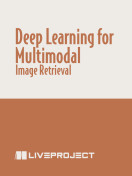 Deep Learning for Multimodal Image Retrieval