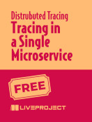 Tracing in a Single Microservice