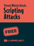 Scripting Attacks