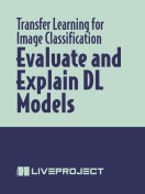 Evaluate and Explain DL Models
