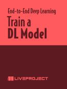 Train a DL Model