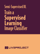 Train a Supervised Learning Image Classifier