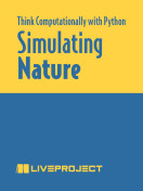 How to Think about Simulating Nature