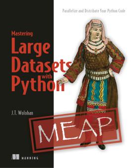 Manning | Mastering Large Datasets with Python