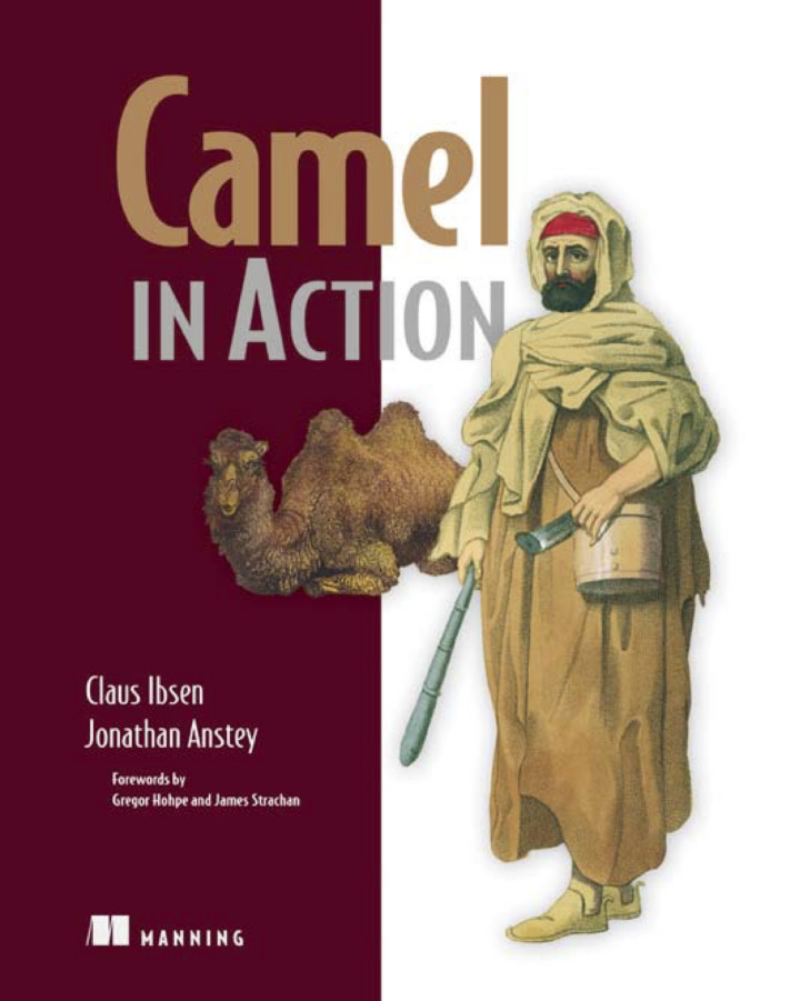About this Book - Camel in Action